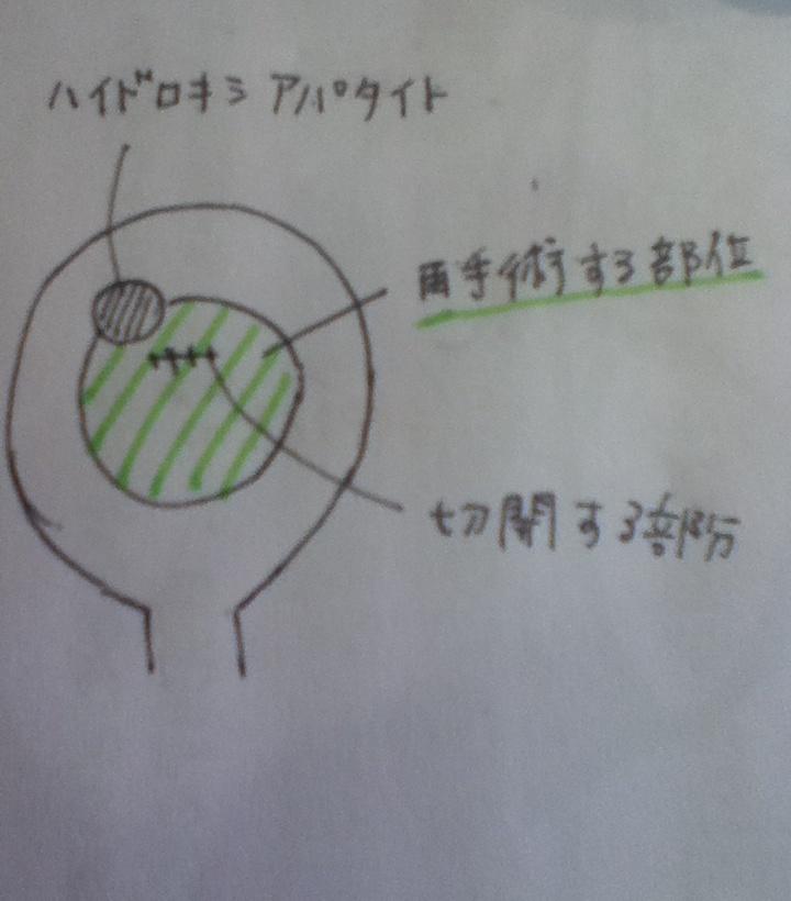 kotobu2